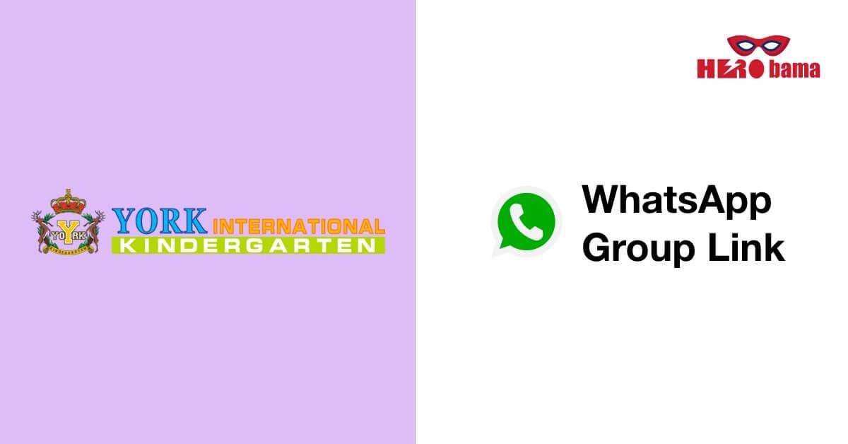 york whatsapp group (1)
